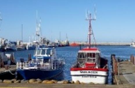 Rederiet Gule Rev - Hav-lystfiskeri | Outdoor