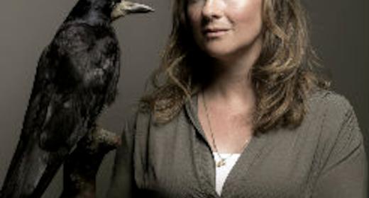 Jeanette Varberg: Viking: Ran, ild og sværd