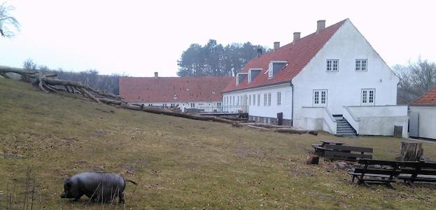 Vandretur på Røsnæs.