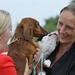 Hunde-topmøde i København