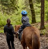 Trækketur i skoven. En god aktivitet for hele familien. Lej en rolig Islandsk hest og træk børnene