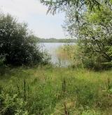 Vandretur ved Nedenskov sø