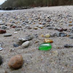 Aftentur: Strandens Skjulte Skatte.