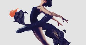 The World Ballet