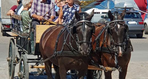 Hestevognstur i Sønderborg