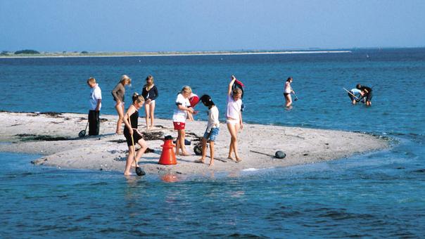 Krabbejagt i Lillehavet