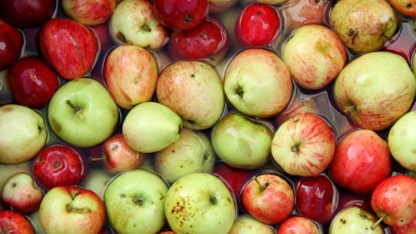 Efterårsferie i æblernes tegn