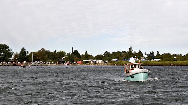 Sejltur til Vigelsø - en naturperle i Odense Fjord