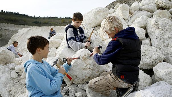 Fossiljagt - Faxe Kalkbrud