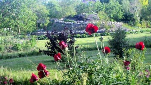 Havevandring - en Rosenhave på Samsø