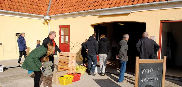 Efterårsferieprogram på vingården.
