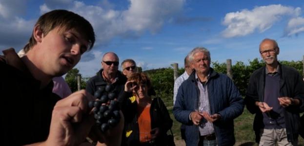 Eksklusiv rundvisning i mark og kældre med stor vinsmagning.