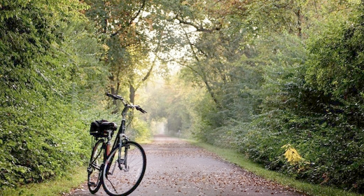 Guidet cykeltur i Helsingørs grønne kulturlandskab