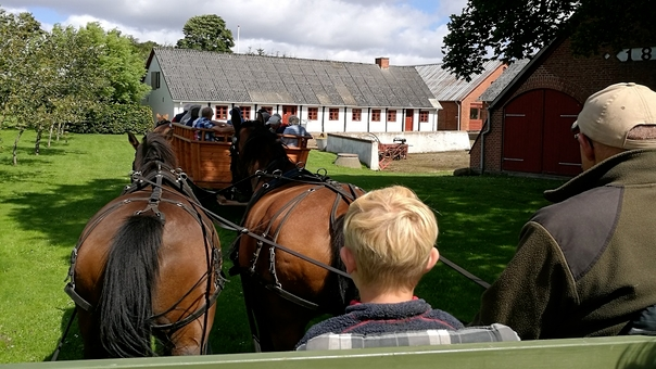 Hestevognskørsel: Try-turen i Hestevogn