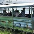 Oplevelsestur Orø rundt med Naturekspressen