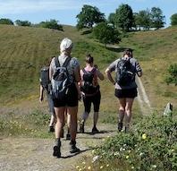 Mols Bjerge Stiens 3 etaper med fortælling