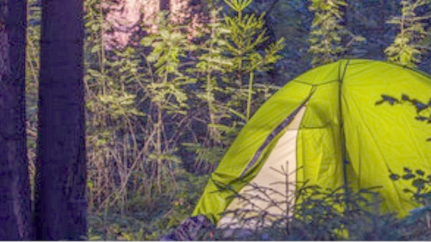 Overnatning i træerne i trætelt