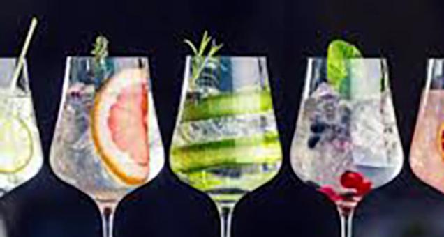 Gin smagning hos Norhvin