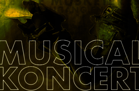 Musical koncert
