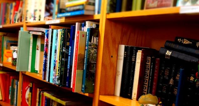Litteraturdage: Booktalk om Astrid Lindgren for 2. 4. klasse
