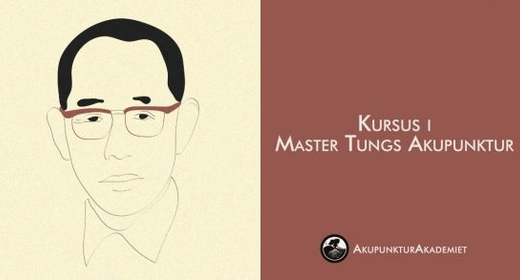 Master Tungs Akupunktur - Behandling For Lungesygdomme