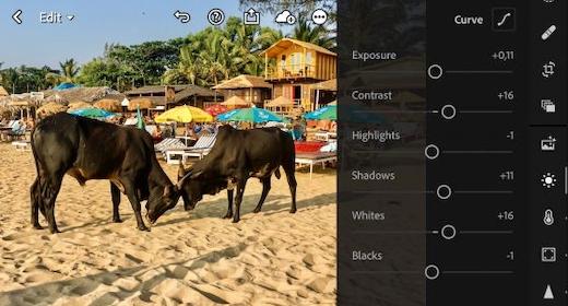 Tag Professionnelle Billeder Med Din Smartphone