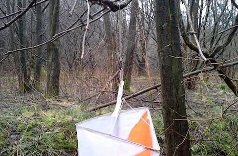 Orienteringsløb i Vesterskoven alle er velkommen