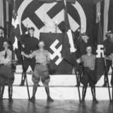 Fascineret af nazismen - fra Frikorps Danmark til landsforræderi