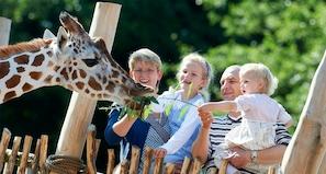 Odense Zoo med Kreds Fyn 16. oktober