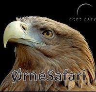 ØrneSafari