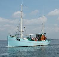 Havnerundfart med E.1