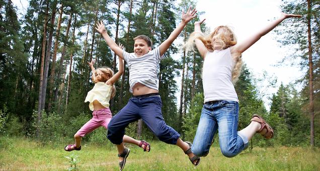 Sommer i skoven (4. til 7. klasse)