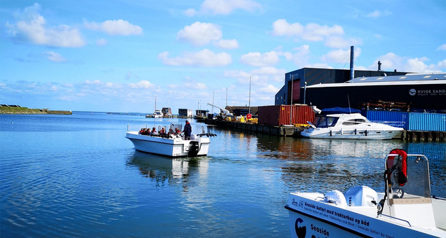 Bådtur på Ringkøbing Fjord