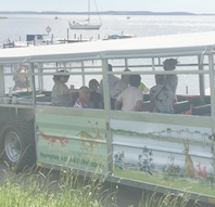 Kør med Naturekspressen til Østskoven og Skuldelev Havn